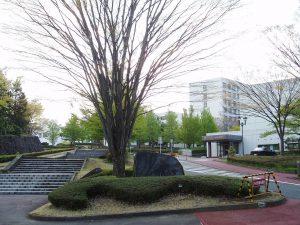 福島大学農学類